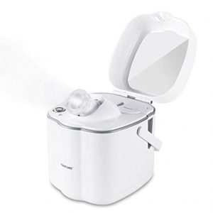 Hot Mist Nano Facial Steamer